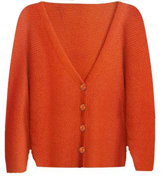 Tramontana Cardigan Mohair Fancy Buttons